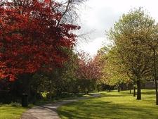 Andrews Arboretum Boulder CO