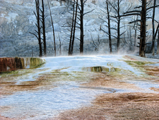 Angel Terrace - Yellowstone - USA