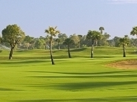 Cambodia Angkor and Golf Tours