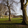 Another View Of Hurlingham Park