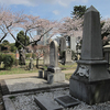 Aoyama Cemetery Foreign Section