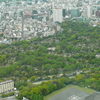 Aoyama Cemetery Viewed From Roppongi Hills