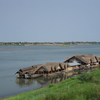A Restaurant On The Mekong