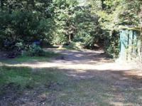 Army Road Campsite