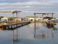 La Lagune de Thau, son terroir et ses métiers