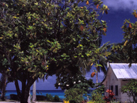 Funafuti