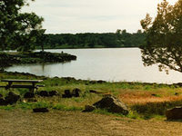 Ashurst Lake Campgrounds