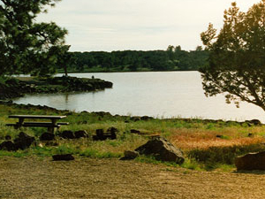 Ashurst Lake Campgrounds