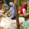 Asosa Market Women