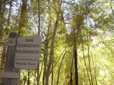 Aspen Grove Trail 2E05