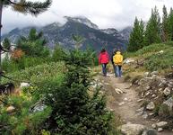 Aspen Ridge Loop