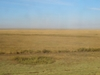 Astana  Steppe   7 7 4 8