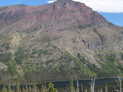 Aster Park Trail - Glacier - Montana - United States