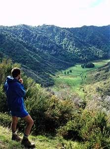 Atene Viewpoint Walk - Whanganui National Park - New Zealand