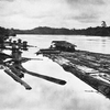 A Timber Raft On The Barito River