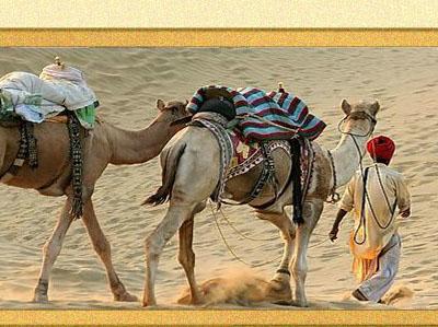 Atithi Tours Travels