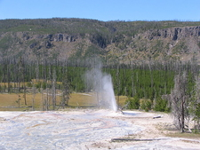 Atomizer Geyser - Yellowstone - USA