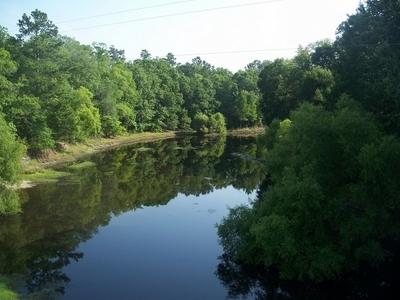 Aucilla River