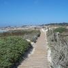 A View Of Moss Beach
