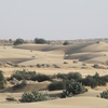 A View Of Sams Sand Dunes