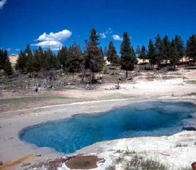 Azure Spring - Yellowstone - USA