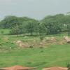 Aartha Kunj