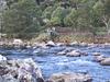 The Gorge Near Waihi