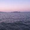 Alcatraz Island From Marina Green