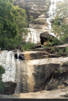 Alligator Creek Falls