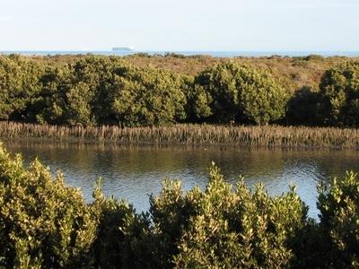 Altona Coastal Park