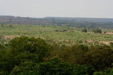 Ananthagiri Forest