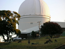 Anglo Australian Observatory