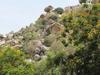 Ardhagiri  View