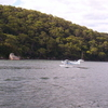 A Seaplane On The Hawkesbury River