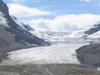 Athabasca  Glacier  Ben W Bell