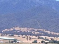 Monte Bogong