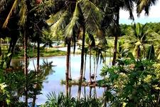 Badian Fish Pond