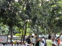 Bahadur Shah Parque