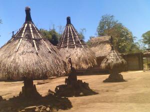 Bajawa
