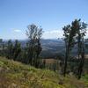 Bald Peak State Scenic Viewpoint