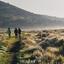 Montañas de Bale Parque Nacional