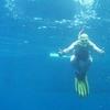 Balicasag Diving - Panglao