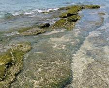 Balicasag Island Coast