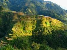 Banaue Rice Terraces - Ifugao