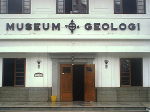 Geological Museum Photos