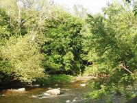 Barrington Río