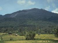 Batang Gadis Parque Nacional
