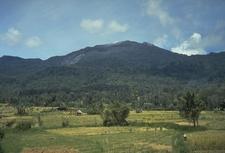 Batang Gadis National Park