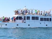 6x5 Tour Isla Tortuga