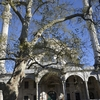 Büyük Selimiye Mosque